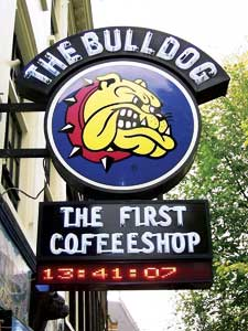 Amsterdam-Coffee-Shop-Tour4